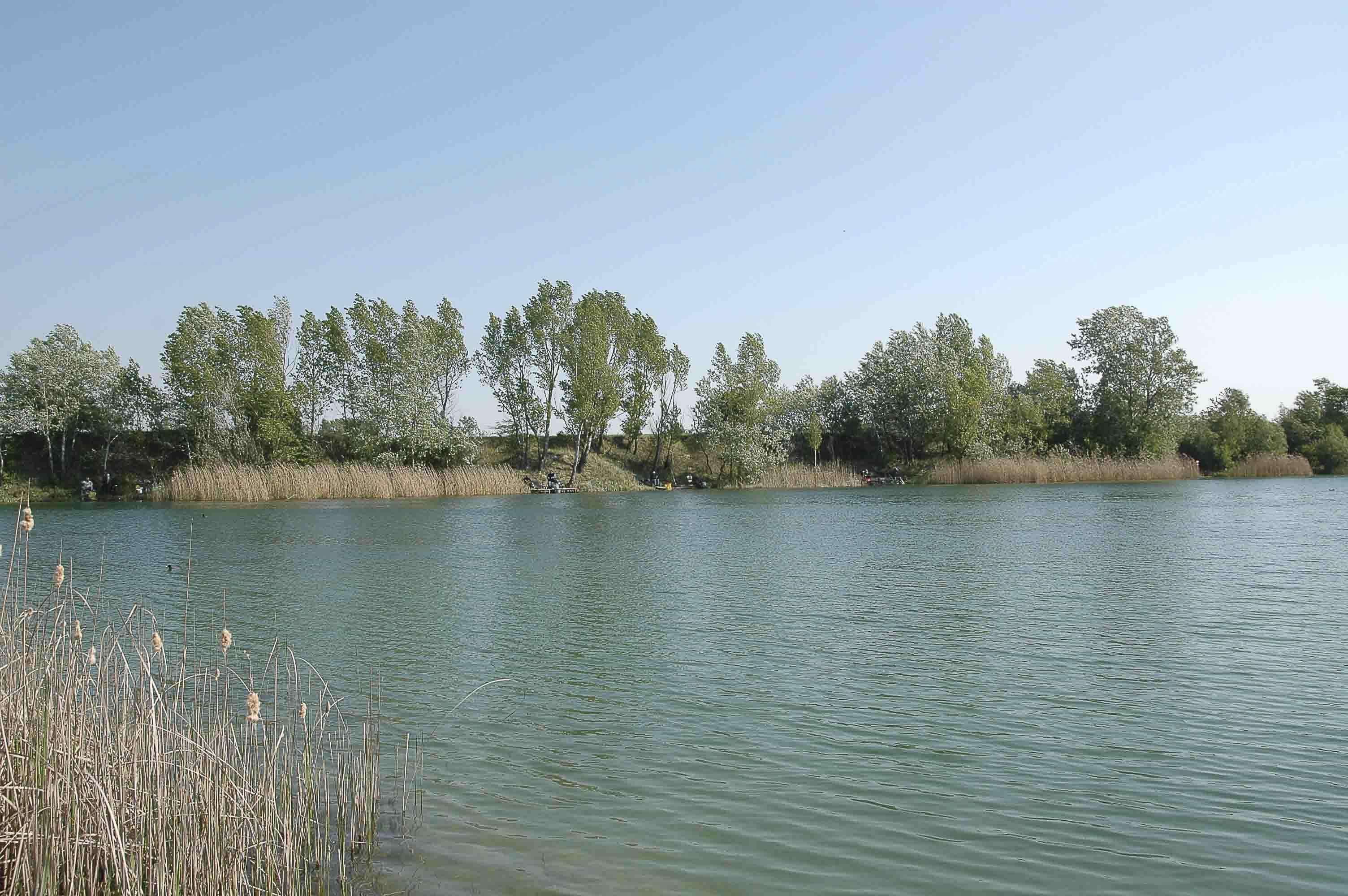 Teich Lobau 2