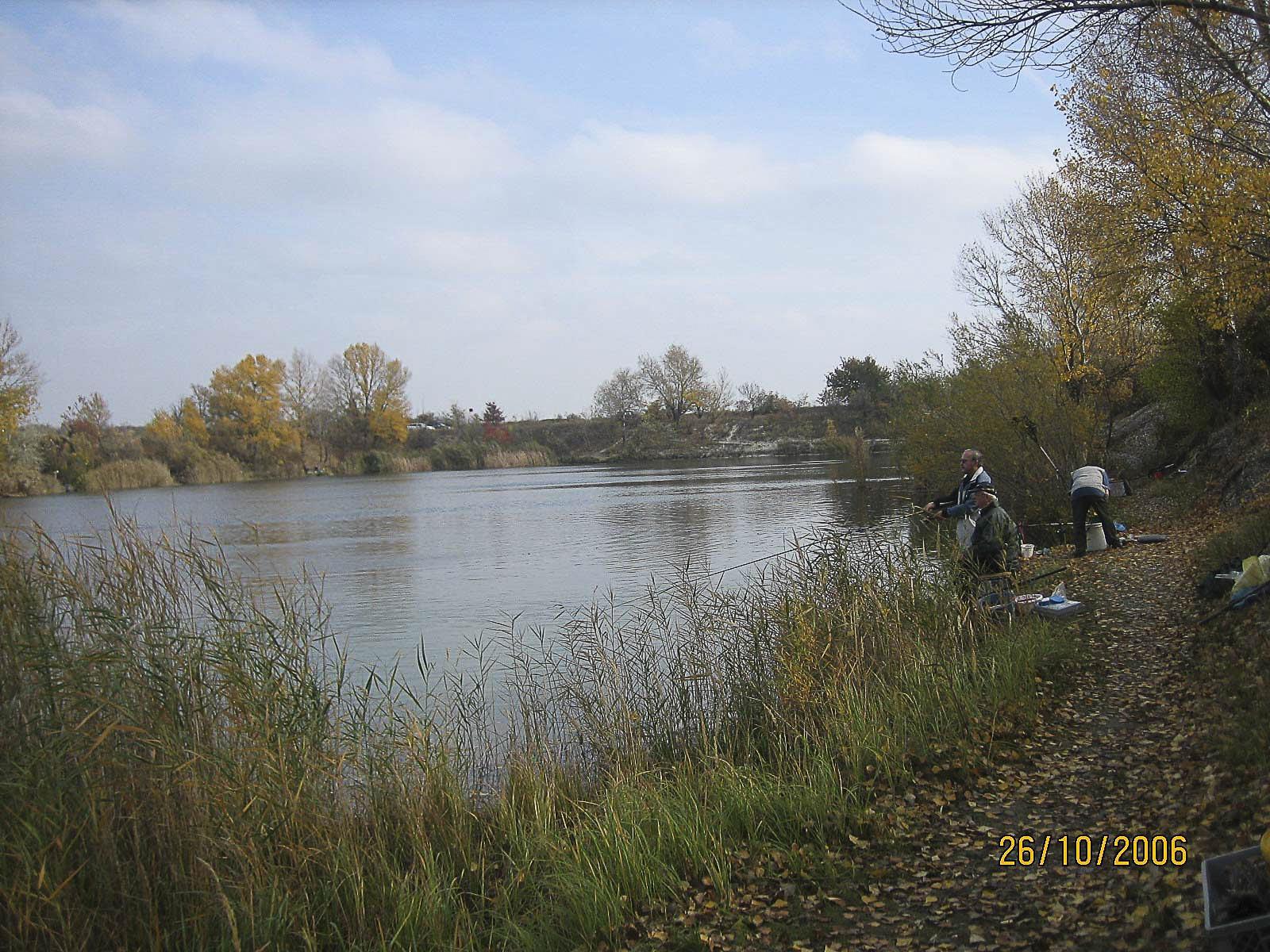 Teich Lobau 7